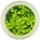 Paiete rotunde în formă de disc - verde fistic