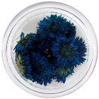 Flori albastre închis pentru unghii – uscate