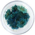 Flori albastre turcoaz pentru unghii – uscate